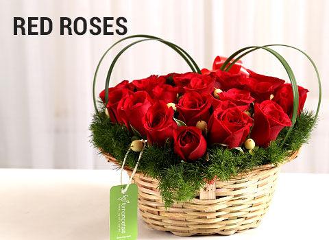 Red-Roses-mob-17-feb-2019.jpg
