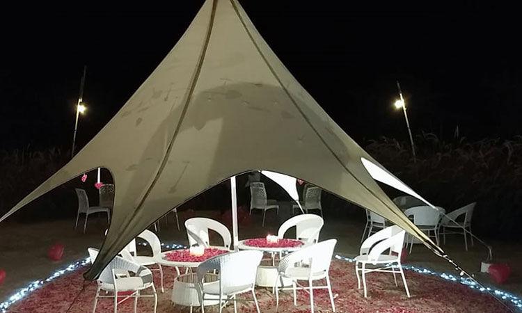 Romantic Dinner Date under Umbrella