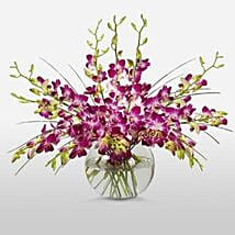 Purple Orchids in Vase: Send Gifts for Him to Canada