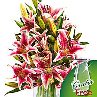 10 pink Stargazer Lilies in a bunch: Get Well Soon