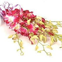 Orchids INDO: Send Flowers to Indonesia
