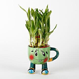 2 Layer Lucky Bamboo In Smiley Mug Green: Buy Indoor Plants