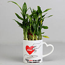 2 Layer Lucky Bamboo Plant in Heart Ceramic Mug: Send Plants for Birthday