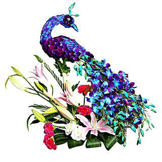 Adorable and Charming Peacock: Anniversary Gifts for Bhaiya Bhabhi