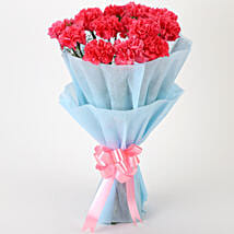 Adorable Pink Carnations Bouquet: Send Flower Bouquets