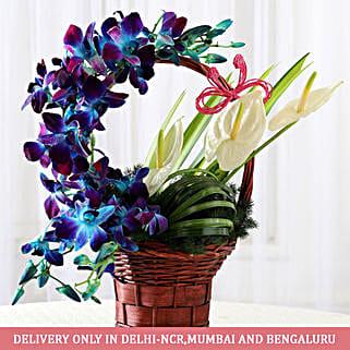 Basket of Purple Orchids & Anthuriums: Send Congratulations Flowers
