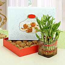 Besan Laddoo with Luck: Diwali Plants