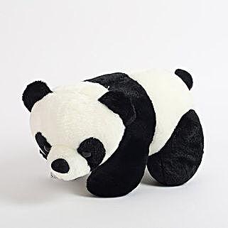 Black N White Panda: Kids Toys & Games