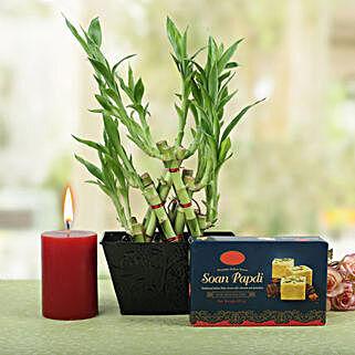 Bright Pyramid Bamboo Combo: Send Plants n Sweets