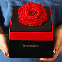 Big Forever Red Rose in Black Velvet Box: Forever Roses
