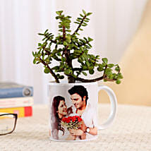 Jade Plant In Personalised Mug-White: Send Plants to Bangalore