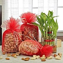 Love For Combo: Gift Hampers to Bhopal