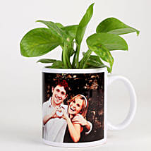 Money Plant In White Personalised Mug: Plants for anniversary