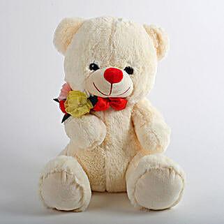 Mushy Teddy Bear: Toys and Games
