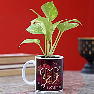 Personalised Karwa Chauth Golden Money Plant: Send Plants to Mumbai