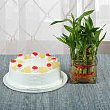 Pineapple Cake With Lucky Bamboo Plant: Pohela Boishakh Gifts