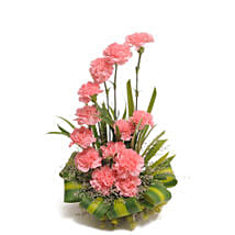 Pink Carnations Basket Arrangement: Flowers to Bengaluru