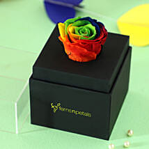 Rainbow Forever Rose In Black Box: Premium Gifts