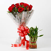 Red Roses & Two Layer Lucky Bamboo Combo: Send Plants for Anniversary