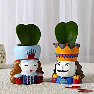 Set of 2 Hoya Plants In King Queen Pots: Buy Indoor Plants