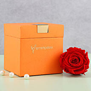 Timeless- Forever Red Rose in Orange Box: Send Flowers to Harda
