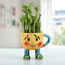 Two Layer Bamboo Plant With Smiley Vase: Send Lucky Bamboo for Thank You