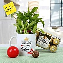 Womens Day Smile Hamper: Lucky Bamboo Plants