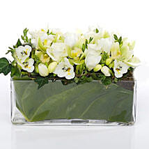 Classic Petals In Glass Vase: New Year Gifts Delivery In New Zealand