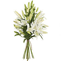 Pristine White Lilies: Lilies to New Zealand