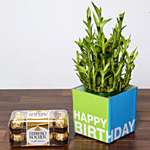 3 Layer Bamboo Plant and Chocolates For Birthday: Indoor Plants in UAE