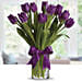 Purple Tulip Arrangement