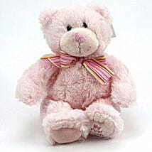 Cute Pink Teddy Bear: Gifts for Anniversary in UK