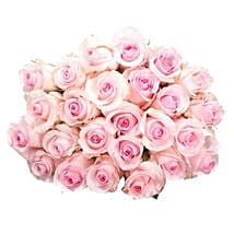 25 Long Stem Pink Roses: Same Day Flower Bouquet Delivery in USA