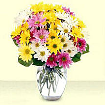Mixed Daisy Bouquet: Send Flowers to USA
