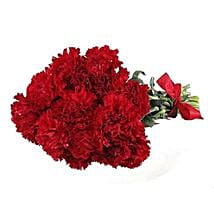 Red Carnations: Same Day Flower Bouquet Delivery in USA