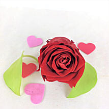 Romantic Red Forever Rose: Send Flowers to USA